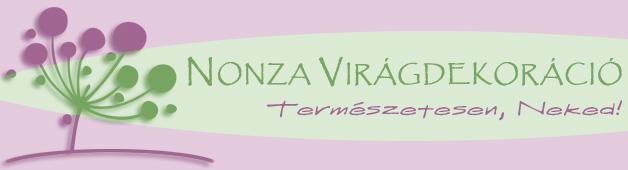 nonza-logo13n